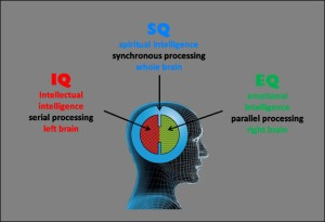 The SQ model of human consciousness